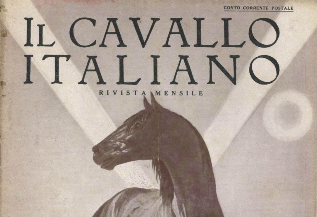 Il Cavallo Italiano Rivista Mensile 1931