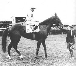 Luna Park 1932